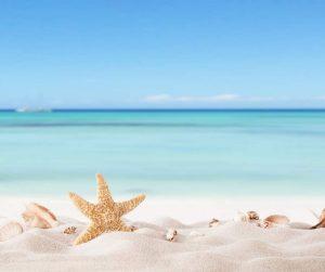 Psoriasis Eczema Clinic Summer Newsletter December 2019